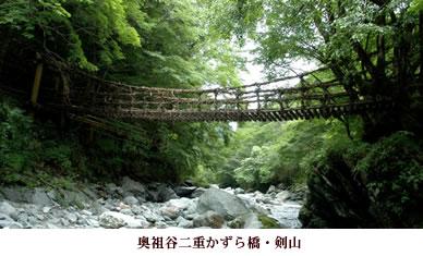 橋 かずら アクセス の 祖谷 【奥祖谷二重かずら橋】アクセス・営業時間・料金情報
